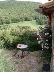 Picture of B&B PODERE COSTA ROMANA of NARNI