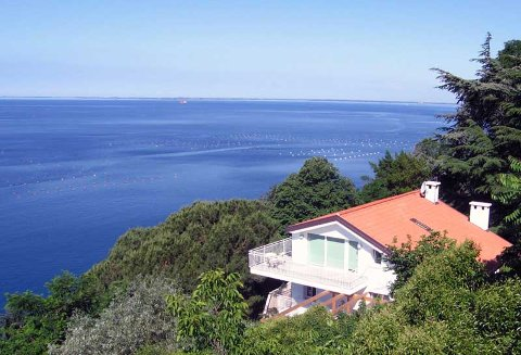 Foto B&B VILLA DREAM HOUSE SUL MARE di TRIESTE