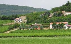 Foto AGRITURISMO  BELVEDERE di VILLAGA