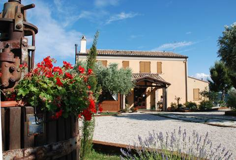 Picture of AGRITURISMO BRICIOLA DI SOLE COUNTRYHOUSE of GROTTAMMARE