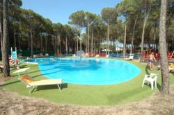 MINERVA CLUB RESORT & GOLF - Foto 10