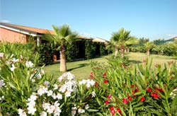 MINERVA CLUB RESORT & GOLF - Foto 7