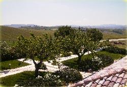 Foto AGRITURISMO COLLE DELLE GINESTRE di MONTENERO DI BISACCIA