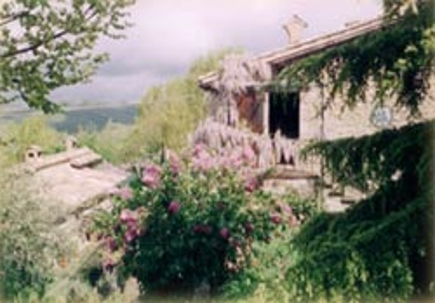 Foto AGRITURISMO  LE CINCIALLEGRE di GUBBIO